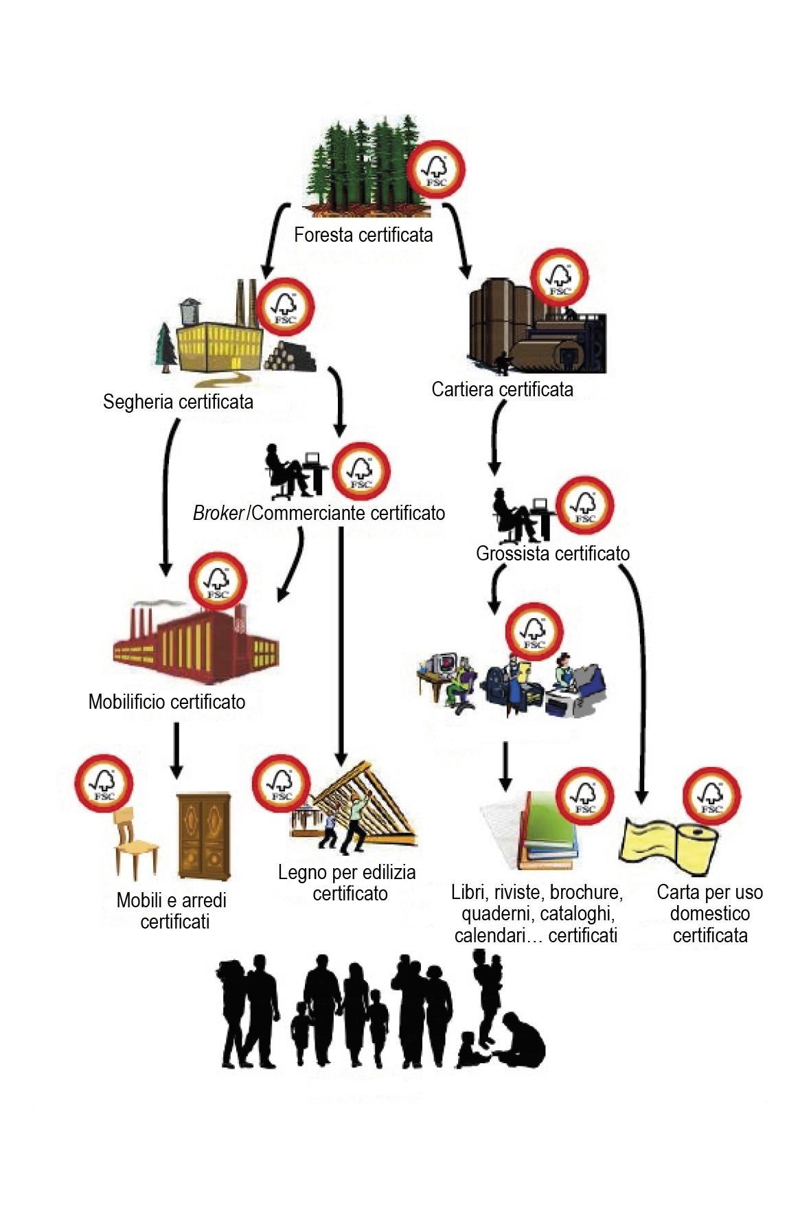 Catena di Custodia FSC®